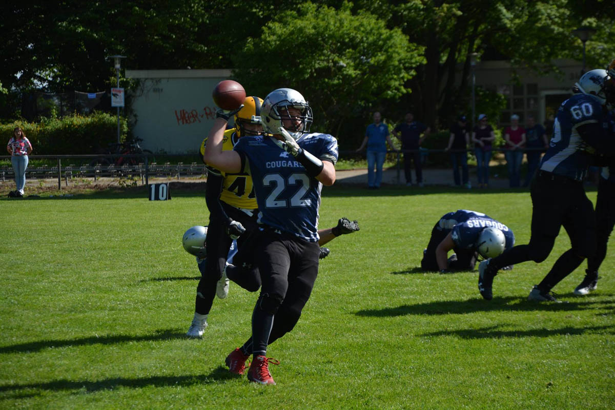 sv kornwestheim football cougars seniors news2 ludwigsbur bulldogs.